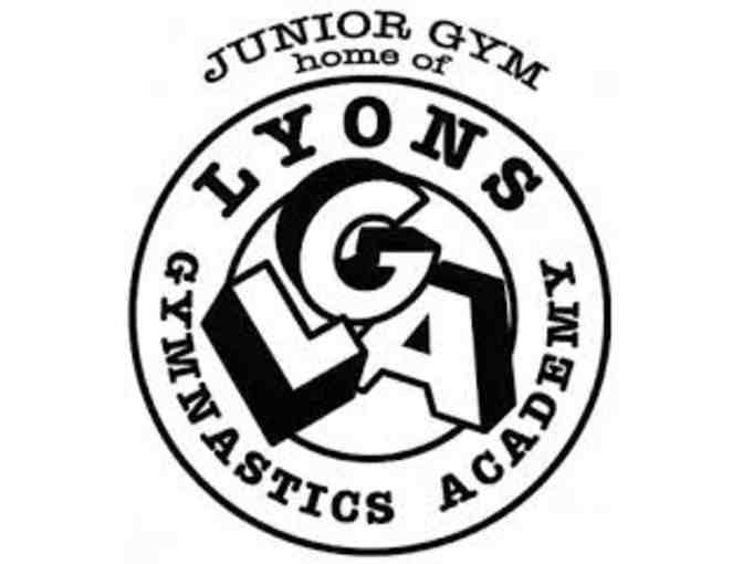 Junior Gym Lyons Gymnastics Academy