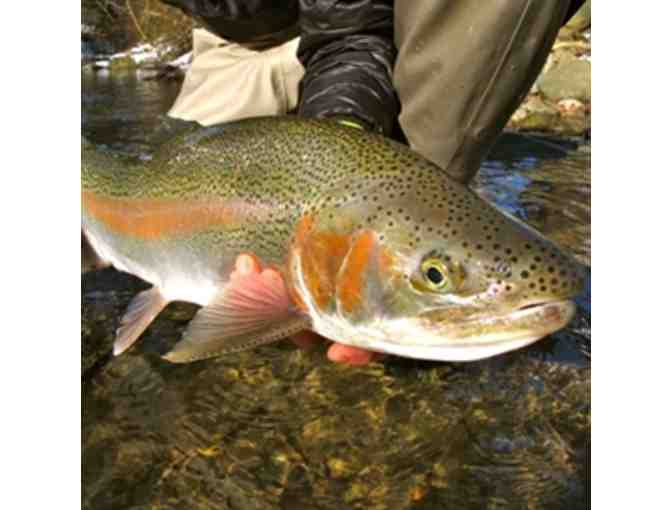 Guided Fly Fishing Trip for Steelhead for Two People