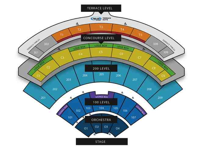Brad Paisley Concert Tickets (Terrace Level)  Daily's Place, Jax, FL - Photo 2