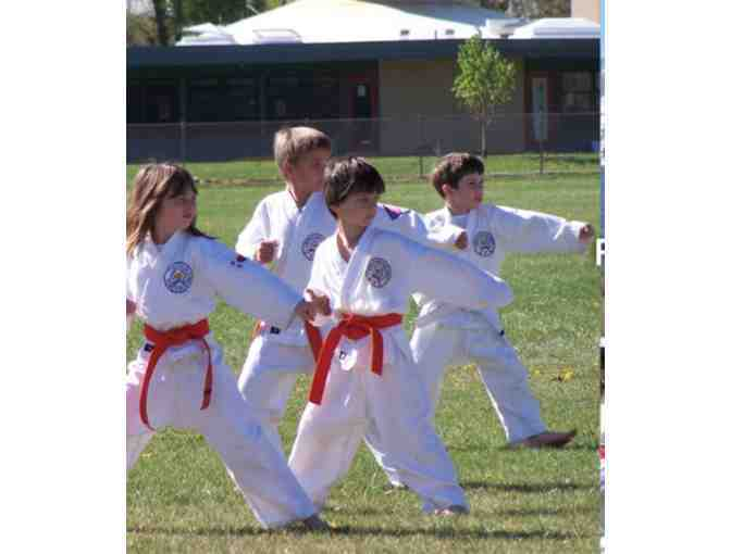 Trial Program! Basalt Do Jang/RMMA - Moo Duk Kwan - Soo Bahk - 8 classes