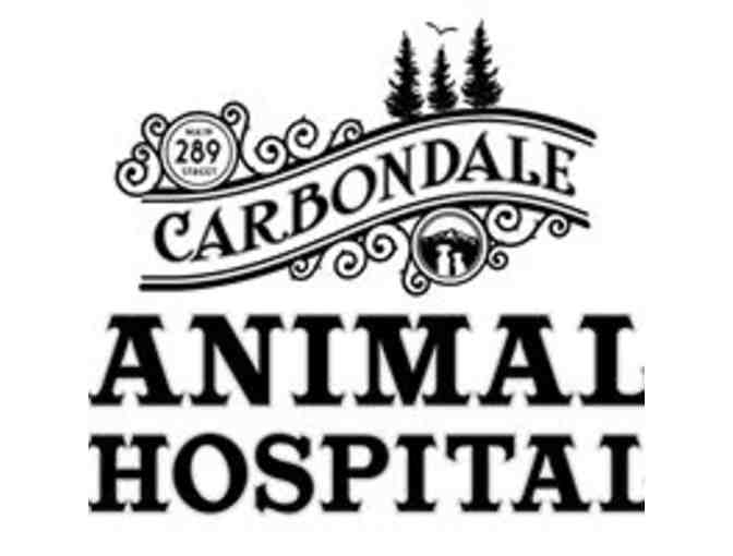$50 Gift Certificate to Carbondale Animal Hospital