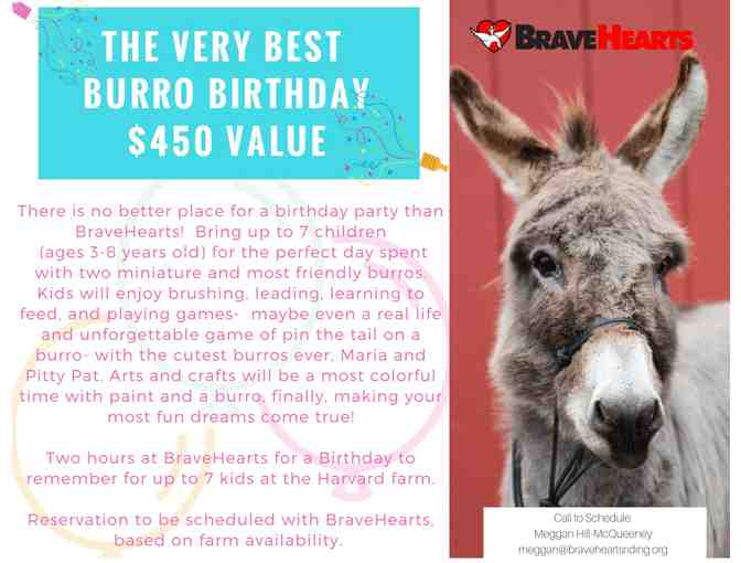 THE VERY BEST BURRO BIRTHDAY PARTY!