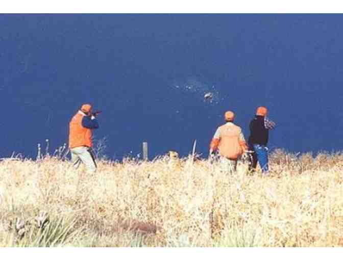 Attention Hunters: Rocky Mountain Roosters Pheasant Hunt for Two Hunters (Dog Included) - Photo 1