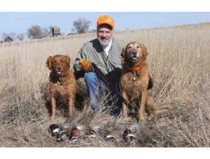 Attention Hunters: Rocky Mountain Roosters Pheasant Hunt for Two Hunters (Dog Included) - Photo 2