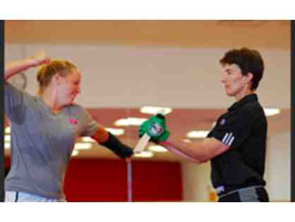 90 Min Self Defense Group Training Session