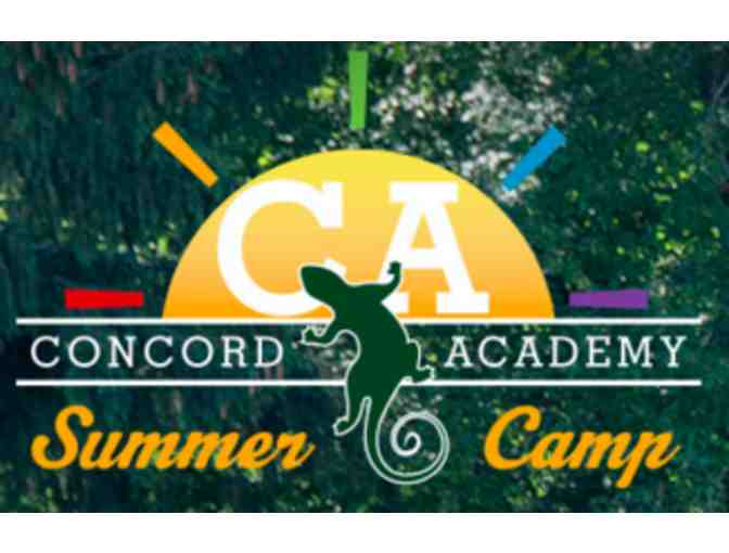 Concord Academy - One Week of Summer Camp!