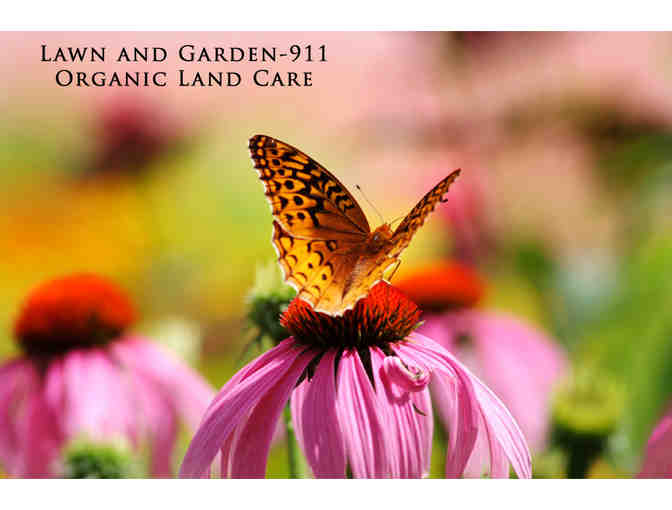 Gift Certificate for 2-hours of Gardening with Professional Horticulturalist Carol Lundeen