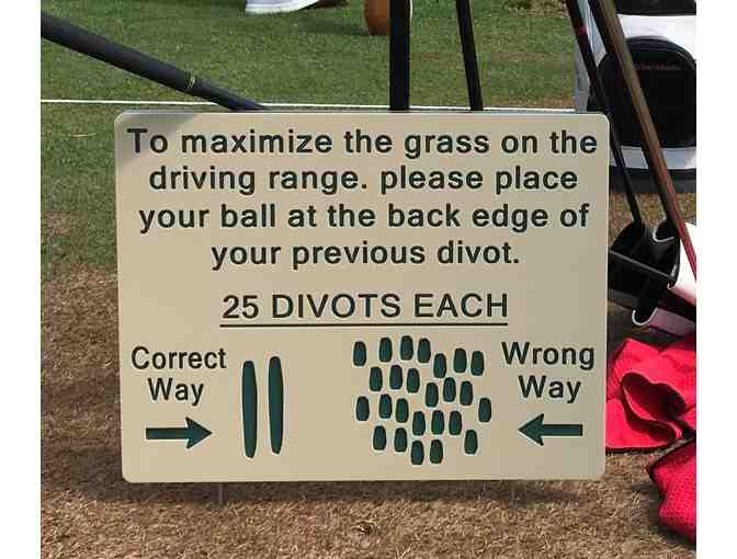 2 HDPE/Routed Plastic Divots Signs