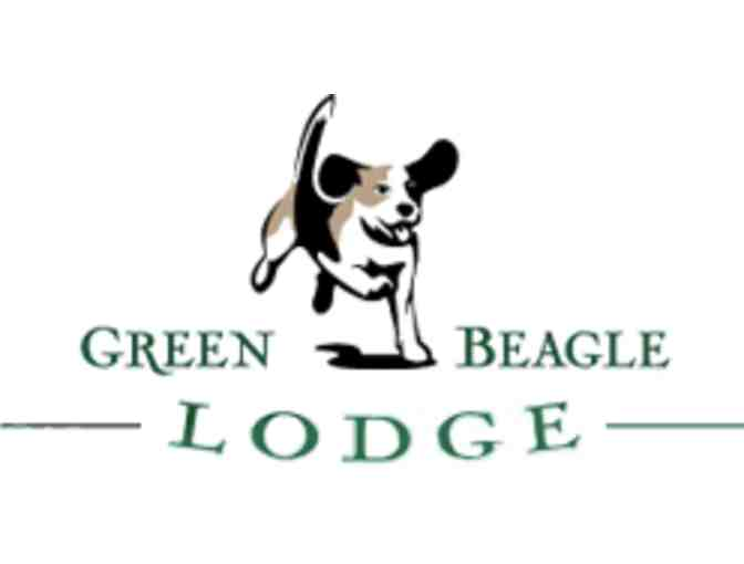 Dog? Vacation? Your Dog will love Green Beagle Lodge! $75 to use for boarding or grooming.