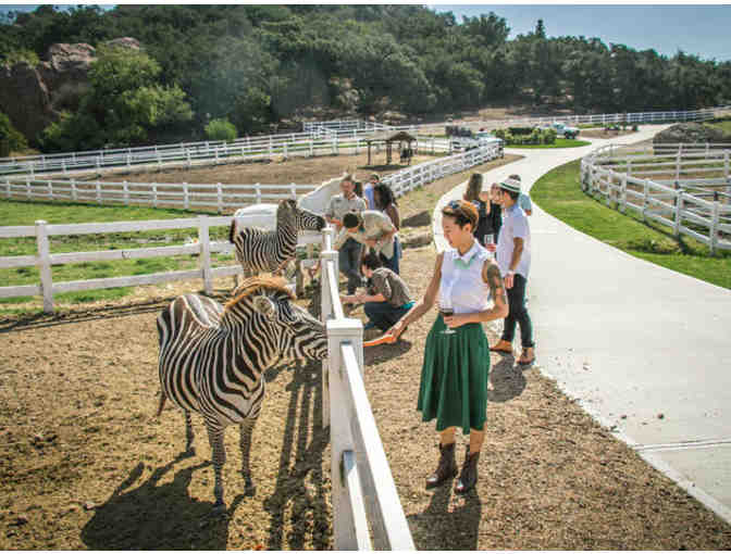 2 Tickets for a Giraffe Explorer Tour at Malibu Wine Safaris