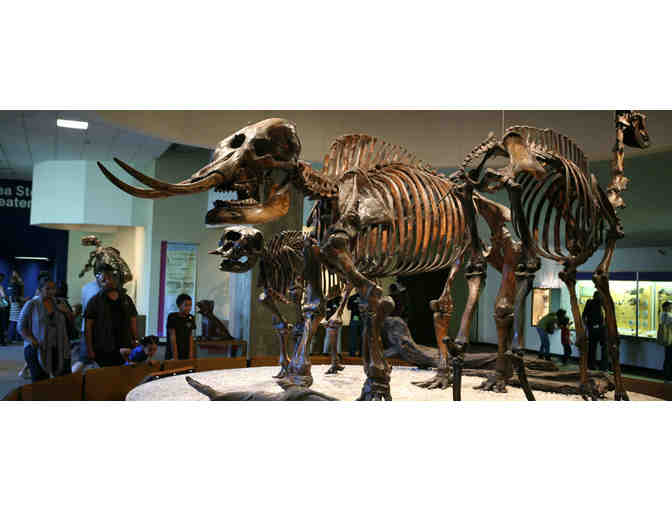4 Guest Passes to The Natural History Museum of LA County or La Brea Tar Pits and Museum
