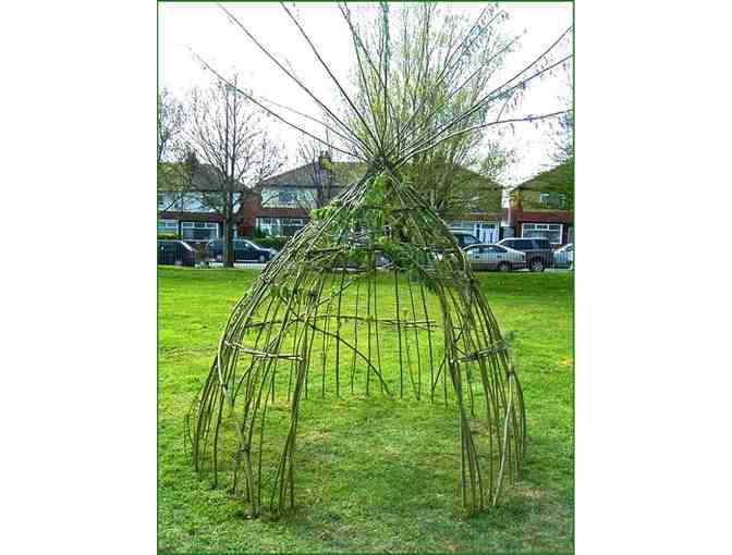 Living Willow TeePee Kit from Vermont Willow Nursery