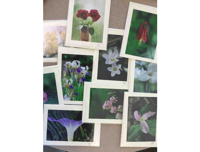 Ten Photo Greeting Cards of Flowers by Photographer Bill Parkhill