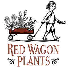 Red Wagon Plants