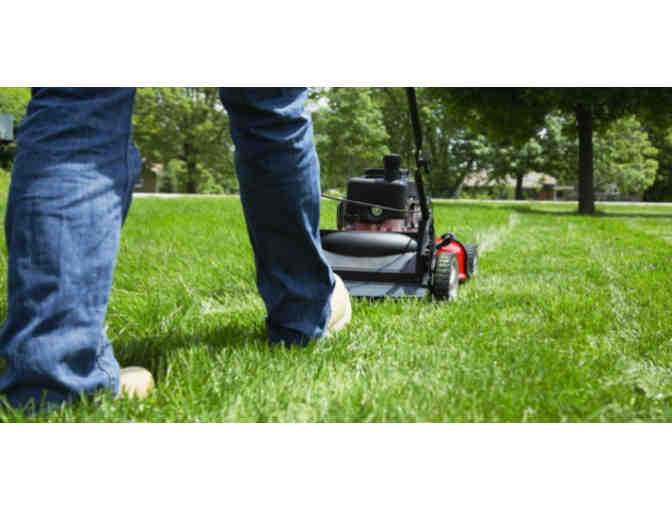 Get your lawn mowed- THREE TIMES!
