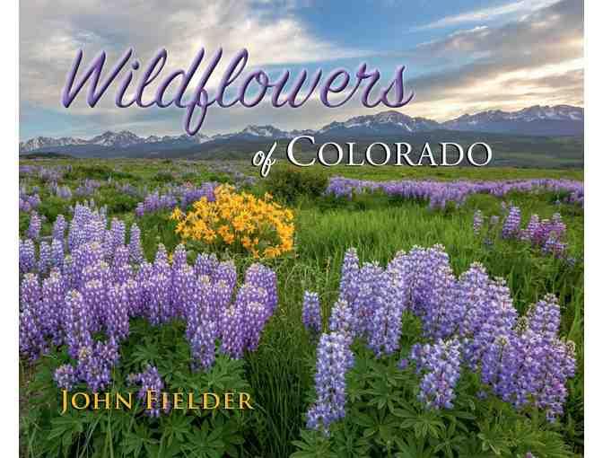 Photographic / Wildflower Hike With John Fielder