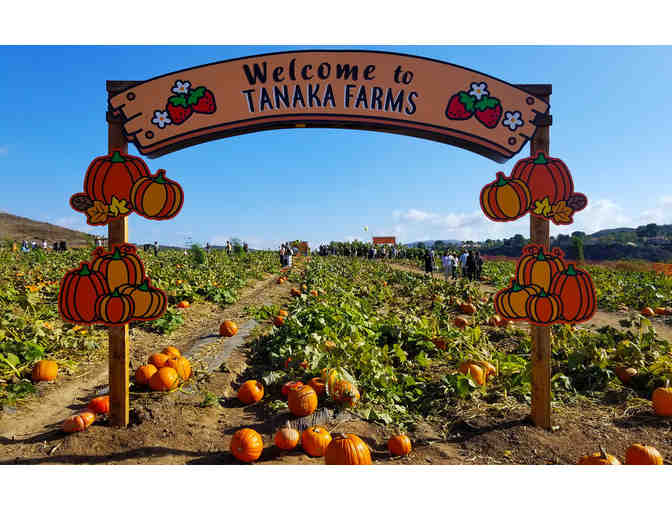 Tanaka Farms - U-Pick Around the Farm Wagon Ride for 4