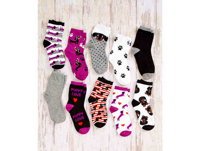 10 Pair Darling Dachshund Socks - Photo 1