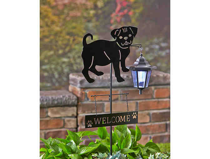 Solar Entry Lantern with Pug Silhouette