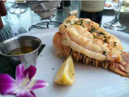 Matanzas on the Bay - A $20.00 Gift Certificate