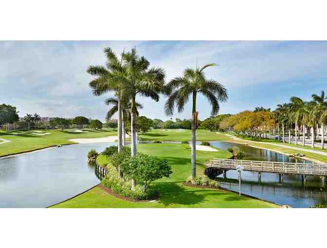 Boca Raton Golf Trip - Photo 1