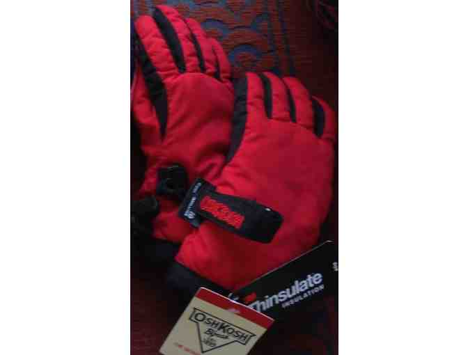 Boy's Ski Gloves (size 2-4T)