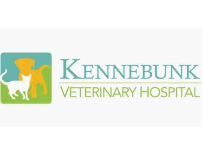 $100 Gift Certificate to Kennebunk Veterinary Hospital