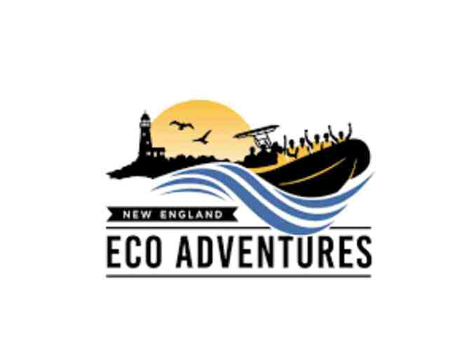 $50 Gift Certificate to New England Eco Adventures - Photo 1