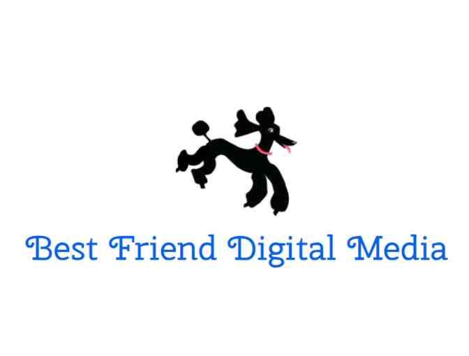 Five hours of website development services donated by Best Friend Digital Media - Photo 1