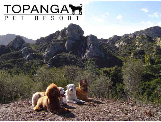 2 Nights of Boarding at Topanga Pet Resort