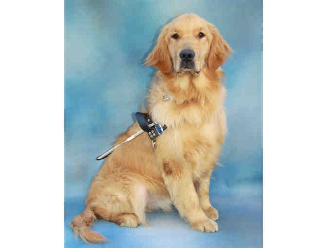 Fund-A-Need - Guide Dog Graduation Kit