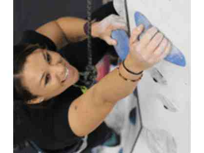 Two Week Trial Membership at Momentum Indoor Climbing