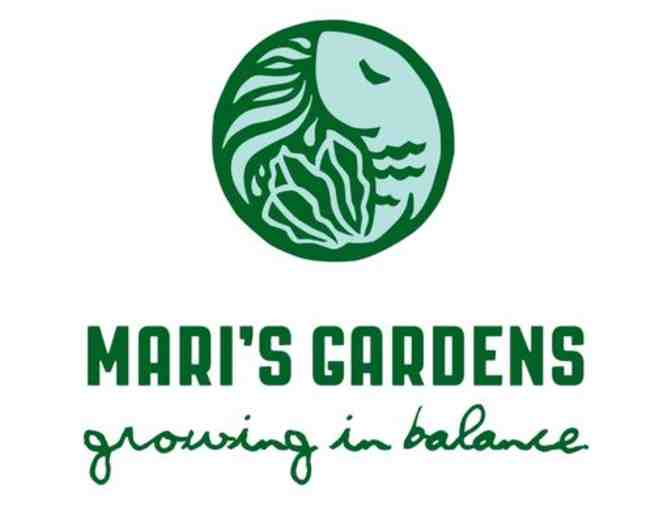 $75 Gift Card to Mari's Garden (Oahu) -1 - Photo 1