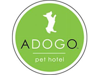 ADOGO Pet Hotel - One Overnight Stay for Your Dog