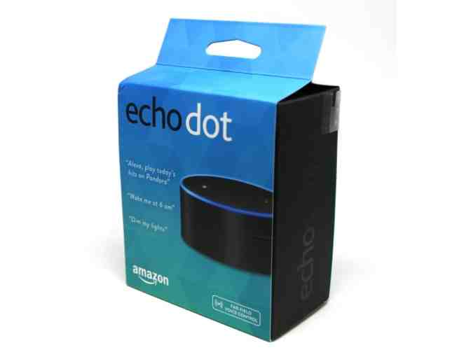 Echo Dot & Amazon Fire Stick