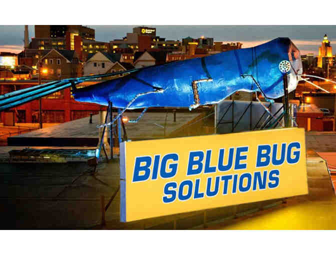 $100 Big Blue Solutions Gift Certificate
