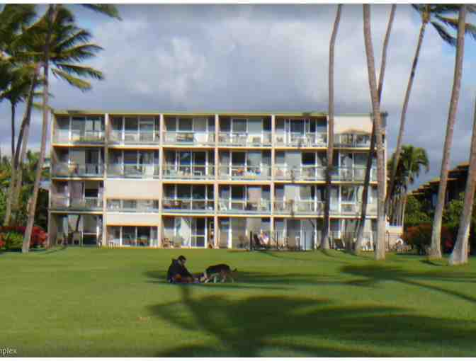 Vacation in Kihei, Hawaii. Immaculate condo owned by EarthTouch inventor, Bruce Hector, MD