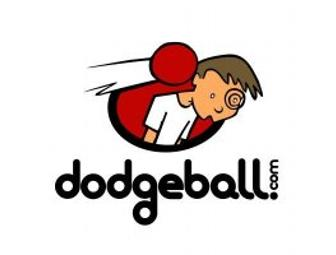 Adult Dodgeball Tournament - Game On!