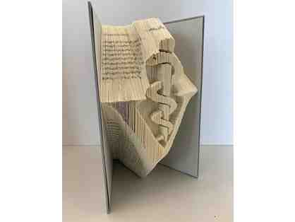 Veterinarian Caduceus Hardback Carved Book Art!