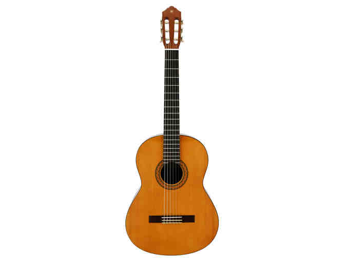 Yamaha C40 Acoustic Guitar from Rainbow Guitar