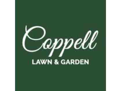 Coppell Lawn and Garden - 5 Flats of Seasonal Color - Delivered