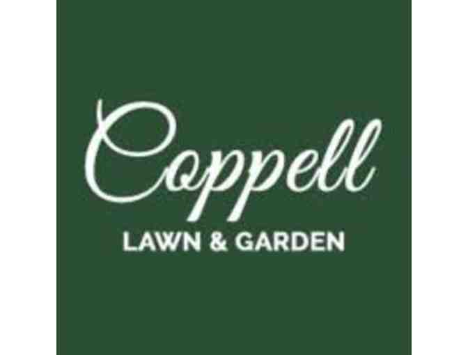 Coppell Lawn and Garden - 5 Flats of Seasonal Color - Delivered - Photo 1
