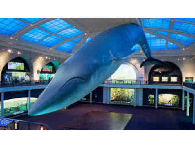 American Museum of Natural History: SuperSaver Admission for 2 People