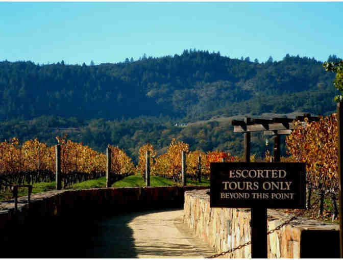 Napa Wine Tasting Tour