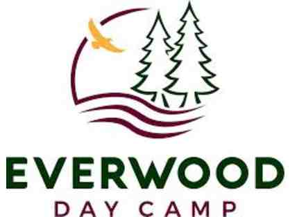 Everwood Day Camp in Sharon, MA - $325 Toward Any 2020 Summer Session