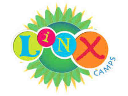 LINX Day Camp - $200 off 1 week of summer camp for 1 child AND 2 friends!