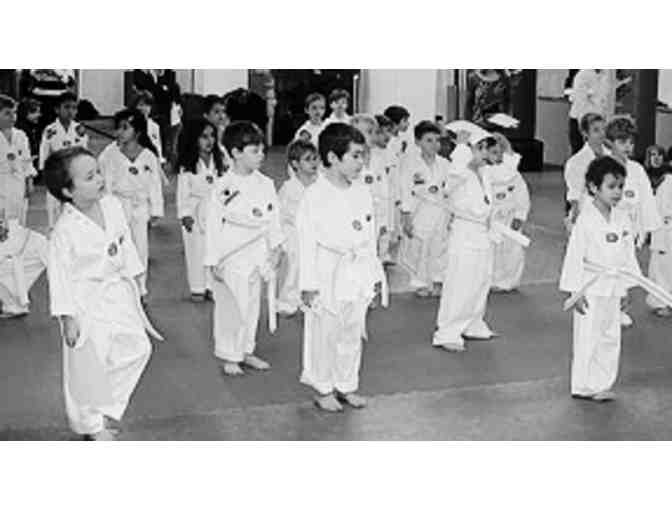 West Side Taekwondo: Beginner's Trial Program