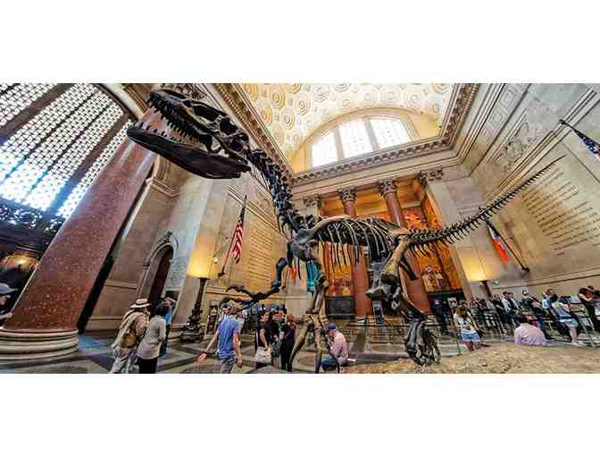 American Museum of Natural History: One Year Family Membership