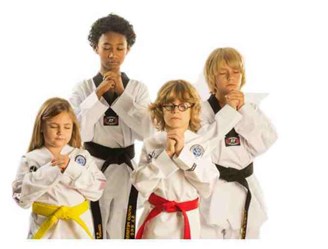 Central Park Taekwondo: Two Weeks of Unlimited Classes