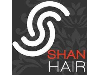 An $80 Gift Certificate to Shan Hair
